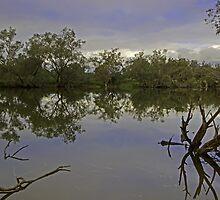 Murray river (Ravernswood) by Elliot62