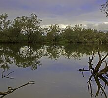 Murray river (Ravernswood) by Elliot62