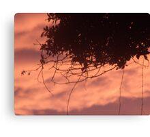 Floridian Sunset Canvas Print