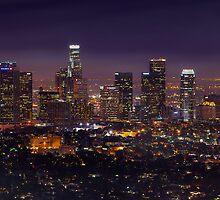 Los Angeles Skyline by DDMITR