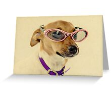Fabulous Vintage Sunglasses Dog Greeting Card