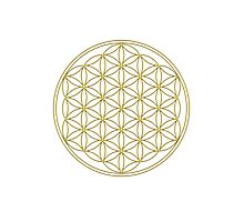 Flower of life - Gold, healing & energizing Photographic Print