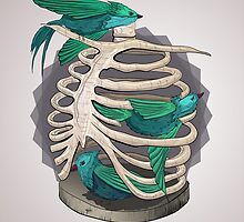 Ribcage by LauraJoanna