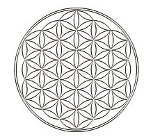 Flower of life - Silver, healing & energizing by nitty-gritty