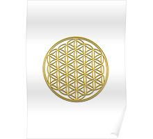 Flower of life, sacred geometry, energizing & purification Poster