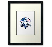 American Baseball Pitcher Gloves Retro Framed Print