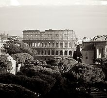 Rome 2010 by Alex Volkoff