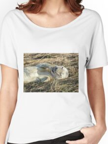 Grey Seal Pup Women's Relaxed Fit T-Shirt