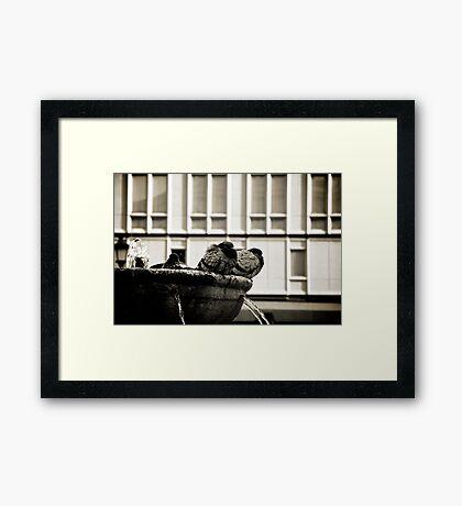 Rome 2010 Framed Print