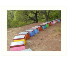 Painted bee-hives in Greece Art Print