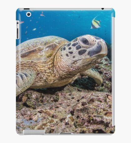Turtle rest iPad Case/Skin