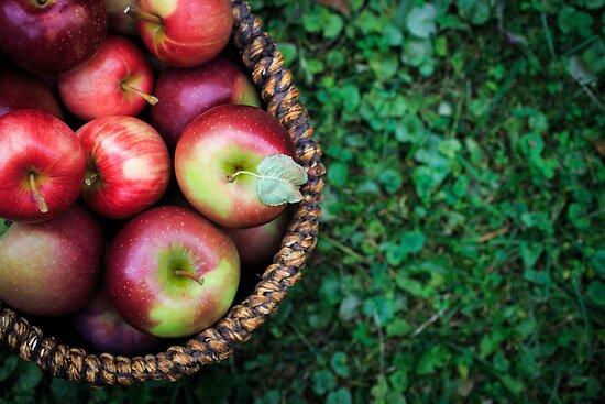 Apple Basket by Edward Fielding