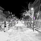 State Street Madison by Steven Ralser