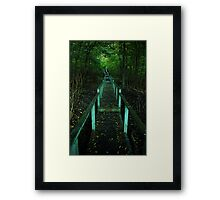 Crothers Woods Staricase Framed Print
