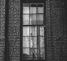 Haunted Window by comeinalone