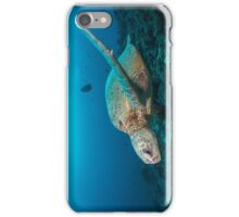 Turtle reef iPhone Case/Skin
