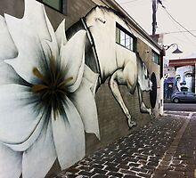 Collingwood Graffiti by Roz McQuillan
