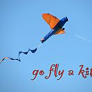 go fly a kite by Zefira