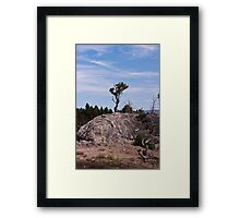 Lone Determined Survival Framed Print