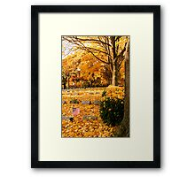 Honor the Fallen Framed Print