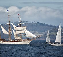 Sailing Ship Europa #9 by Chris Cobern