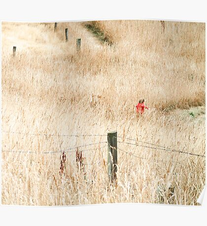 The Joy of Long Grass  Poster