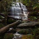 Lower Blue Mountains. by Warren  Patten