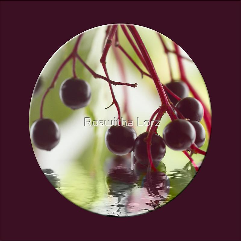 Elderberry purple by RosiLorz