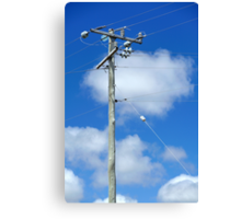 high powered pole Canvas Print