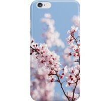 Pink for girls, blue for boys iPhone Case/Skin