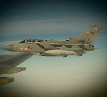 Tornado on the wing  by Wildollie