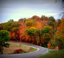 Country Road In Autumn by kkphoto1