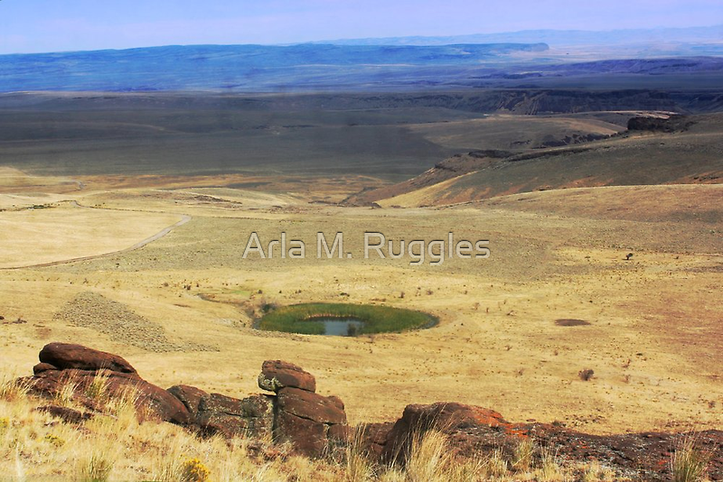 Mountain Oasis by Arla M. Ruggles