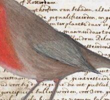 Oil Pastel Red Robin on Vintage Script Sticker