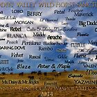 2014 Hidden Valley Wild Horse Sanctuary Calendar by Ellen  Holcomb