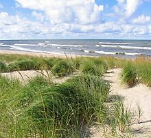 Windy Shoreline by Kathilee