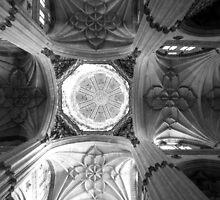 Cathedral of Salamanca by JavierMontero