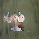 Ringed Teal by Greybeard