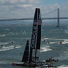 """""""The USA Oracle wins the America's Cup"""" by DonnaMoore"""