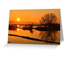Sunset @ Lake Kerkini Greeting Card