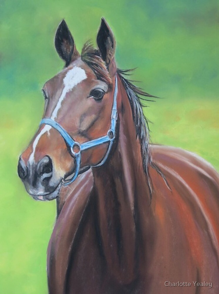 Hanover Horse by Charlotte Yealey