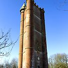 King Alfred's Tower, Stourton, Wiltshire, United Kingdom. by Andrew Harker