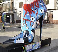 Lost Shoe by roggcar