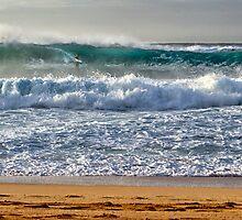 Surfing the Pipe by Michael Treloar