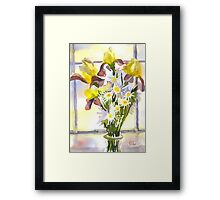 Daisies with Yellow Irises Framed Print