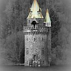 lake vyrnwy tower by David Audsley