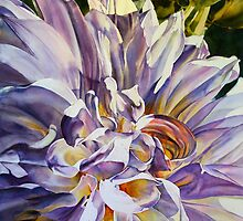 Silver Queen Dahlia by Elaine Frenett