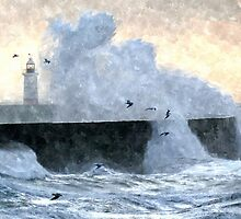 Gulls & Gales by mikebov