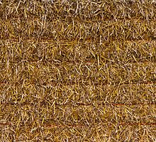 SQUARE STRAW BALE by JASPERIMAGE