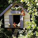 Chicken House by Gabrielle  Lees